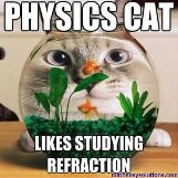 Physics cat likes refraction