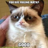 Grumpy cat likes when others fail math