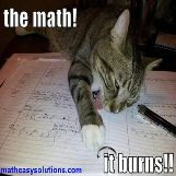Math burns cats too